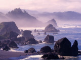 Morning Mist along Oregon Coast near Nesika  Oregon  USA