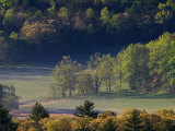 Aerial View of Forest in Cades Cove  Great Smoky Mountains National Park  Tennessee  USA