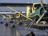 Seaplanes Docked on Lake Washington  Seattle  Washington  USA