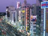 Ueno  Tokyo  Honshu  Japan