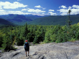 Hiking on Mt Crawford  New Hampshire  USA