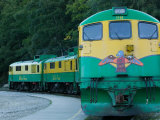 White Pass and Yukon Route Scenic Railroad Locomotive  Skagway  Southeast Alaska  USA