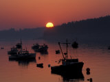 Lobster Boats in Harbor at Sunrise  Stonington  Maine  USA
