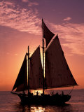 Sailboat at Sunset  Key West's Old Town Harbour  Florida Keys  Florida  USA