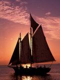 Sailboat at Sunset  Key West's Old Town Harbour  Florida Keys  Florida  USA