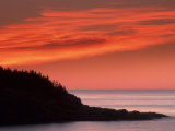 Coast at Sunrise  Acadia National Park  Maine  USA