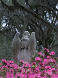 Bonaventure Cemetery  Savannah  Georgia  USA