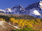 Fall Colors on Aspen Trees  Maroon Bells  Snowmass Wilderness  Colorado  USA