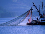Commercial Fishing Trawler  Frederick Arm  Inside Passage  Southeast Alaska  USA