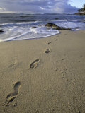 Footprints in the Sand  Turtle Bay Resort Beach  Northshore  Oahu  Hawaii  USA