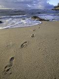Footprints in the Sand  Turtle Bay Resort Beach  Northshore  Oahu  Hawaii  USA