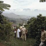 Cauca River Valley  Colombia
