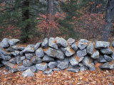 Stone Wall next to Sheepboro Road  New Hampshire  USA