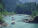 Rafters Along the Middle Fork of the Flathead River  Glacier National Park  Montana  USA