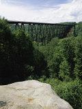 Kinzua Bridge State Park  Pennsylvania  USA