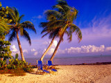 Palm Trees and Beach Chairs  Florida Keys  Florida  USA