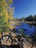 Mountain Bike at Beaver Pond in Pawtuckaway State Park  New Hampshire  USA