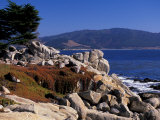 17-Mile Drive  Pescadero Point  Carmel  California  USA