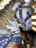 Horse on Carousel in Caras Park  Missoula  Montana  USA