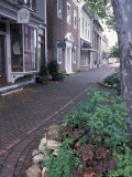Brick Sidewalks in the Historic District of Chestertown  Maryland  USA