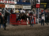 Brawley Rodeo  California  USA