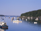 Lobster Boats in Stonington Harbor  Maine  USA