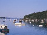 Lobster Boats in Stonington Harbor  Maine  USA