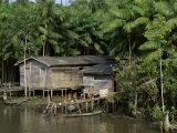 Amazon Rivers Furo de Breves Para  Brazil