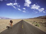 Death Valley  California  USA