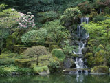 Japanese Gardens  Portland  Oregon  USA