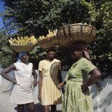 Banana Vendors  Kingston  Jamaica