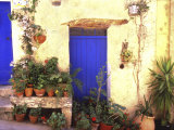 La Cadiere D'Azur Provence  France