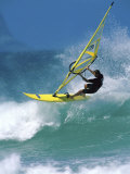 Windsurfer
