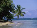 Cape Samana  Dominican Republic