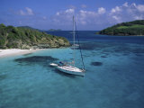 Tobago Crays  the Grenadines