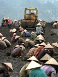 A Group of Scavenger Coal Workers
