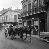 Tourists Take in the Scenery Via Horse-Drawn Carriage on Royal Street in New Orleans