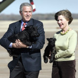 President Bush and First Lady  Laura  Carry Their Dogs