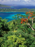 Magens Bay  St Thomas  Caribbean