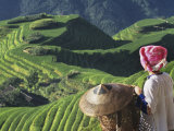 Zhuang Girl with Rice Terraces  China