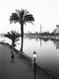 View of the Nile River  Cairo  Egypt