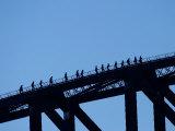 Bridge Climbers on Sydney Harbor Bridge  Sydney  Australia