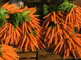 Carrots  Metkovic  Dalmatia  Croatia