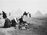 Camel Jockeys at the Giza Pyramids  Cairo  Egypt