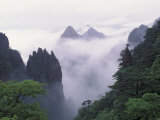 Landscape of Mt Huangshan (Yellow Mountain) in Mist  China