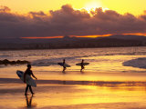 Surfers at Sunset  Gold Coast  Queensland  Australia