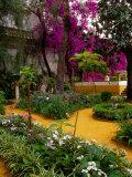 Garden Courtyard  Marrakech  Morocco