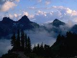 Mist Shrouding the Valleys of the Paradise Area Trails  Mt Rainier National Park  USA