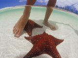 Starfish and Feet  Bahamas  Caribbean