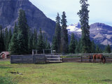 Log Cabin  Horse and Corral  Banff National Park  Alberta  Canada